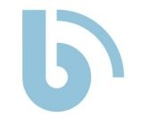 Blueprint Insurance Group