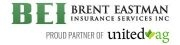 Brent Eastman Insurance Services Inc