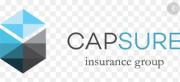 CapSure Insurance Group Inc